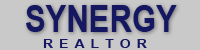 Synergy Realtor